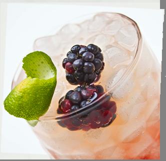 The Old Liquor Store, LVL by La Vieja Licoreria, Cocktail, Bramble, Blackberry Liquor